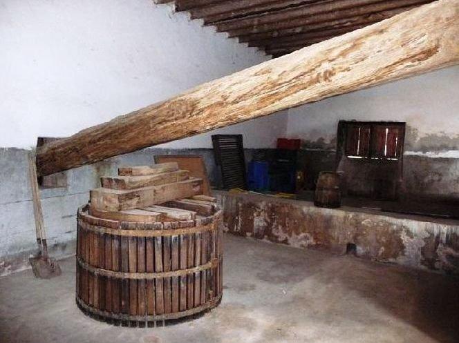 Ruta del vino en Lanzarote interior