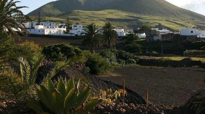 Ruta del vino en Lanzarote viñedos